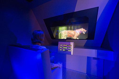 installation art numérique musée